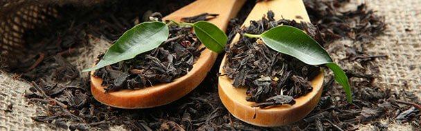 Senkt Grüner Tee Den Blutdruck