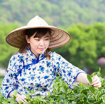 China-teee2